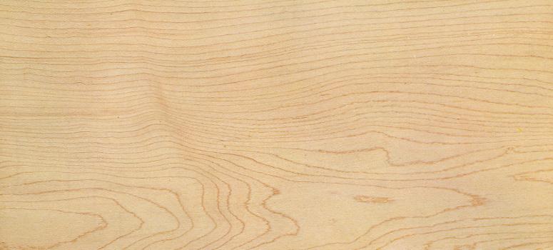 Các đặc điểm của gỗ thích cứng